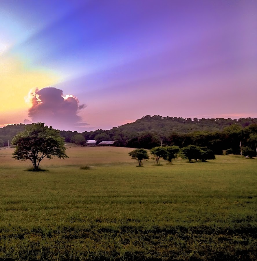 Country Sunset by Larry Bodinson - Landscapes Sunsets & Sunrises ( sunset with clouds, sunset, light rays from sun, country sunset, pastel sunset )