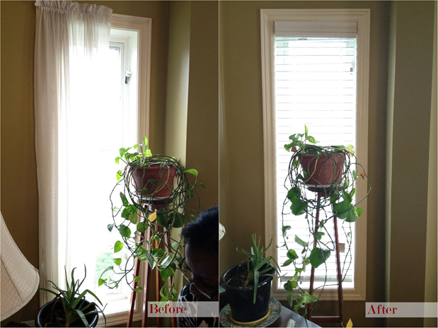 Blinds in Living Room - Before and After