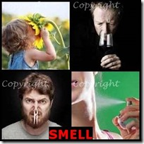 SMELL- 4 Pics 1 Word Answers 3 Letters