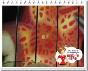 hidden mickeyDisney January 2012 06910