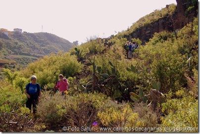 4957 Montaña Alta-Guía