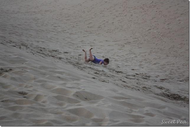 Beach Dunes4