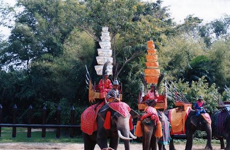 Spectacol Bangkok: lupta elefanti