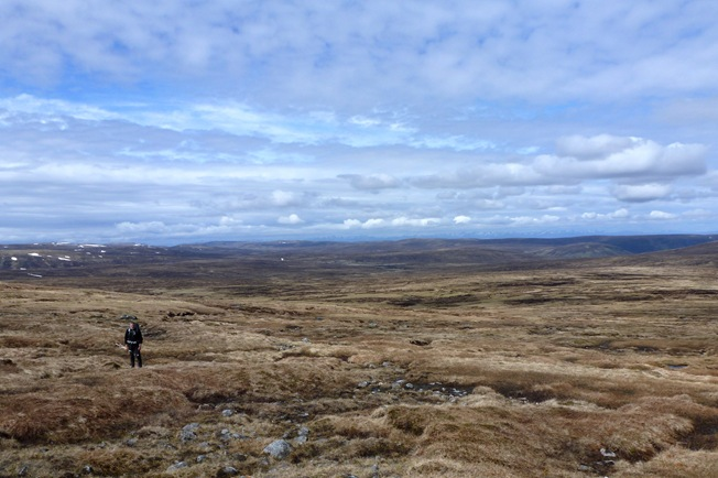 PHIL'S PIC: ME IN MONADH LIATH HEAVEN
