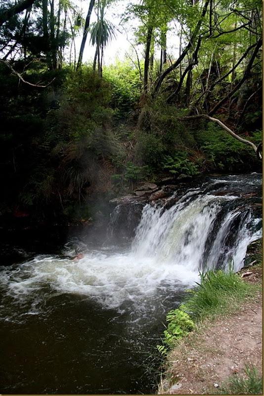 Steaming waterfall of Kerosene Creek - near Rotorua