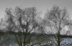 REFLECTION 24