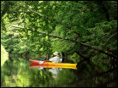 Kayaking the Exeter River 055