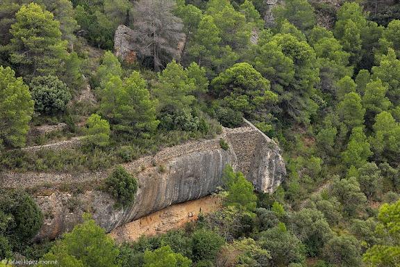 Antics bancals de conreu abandonats i restes de construccions de pedra seca al racó de les Pinedes, sota la punta de l'Ereta, Montsant, Parc Natural,Cabacés, Priorat, Tarragona