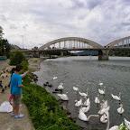 Pont de Neuville sur Saône photo #1437