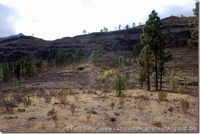 6945 Chira-Cruz Grande(Los Llanos)