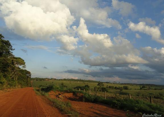 Prairies. Colider (Mato Grosso, Brésil), 4 février 2010. Photo : Cidinha Rissi