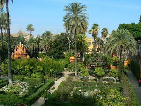 Gradini Spania: gradina Alcazarului din Sevilla