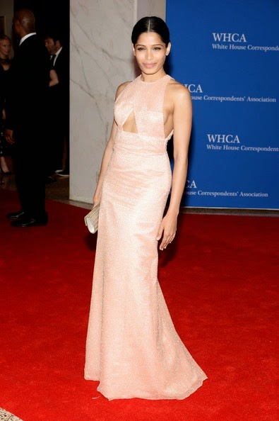 Freida Pinto attends the 100th Annual White House Correspondents