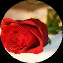 Image Google de Carine Michelena