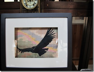 shadow box condor