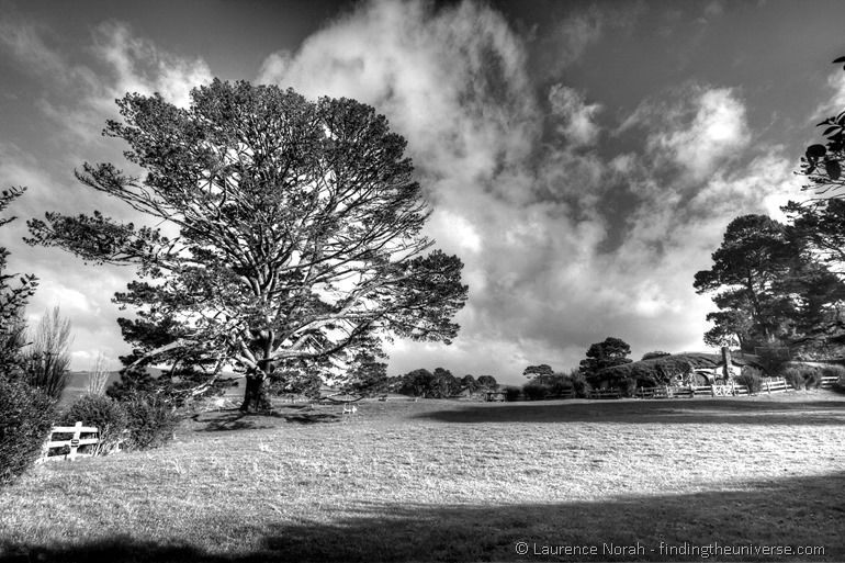 Hobbiton party tree black and white