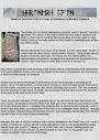 Sementes da árvore do mundo uma cartilha sobre os princípios de Esoteric Runelore