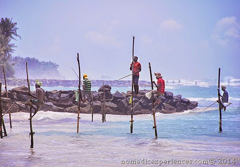 Stilt fishing3