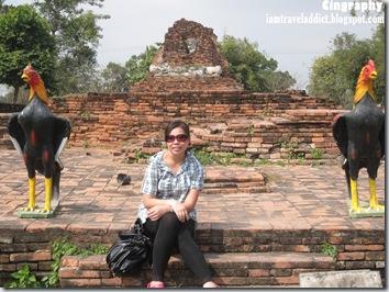 AyutthayaIMG_0358-20100212