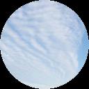Image Google de stiv de pauw