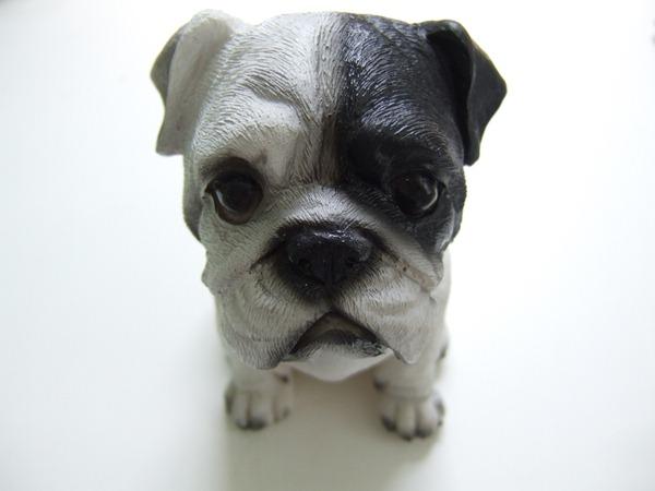Little plastic dog