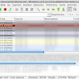 Wiresharkパケット・キャプチャの結果