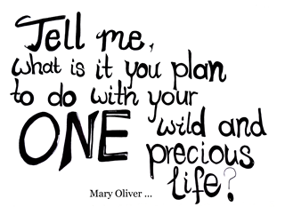 Mary Oliver.