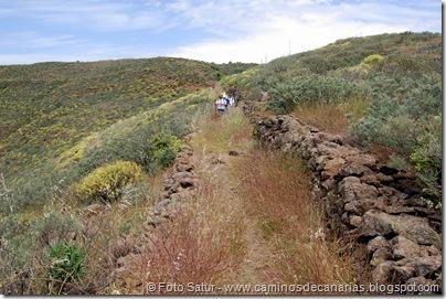 5834 Pico las Nieves-Temisas