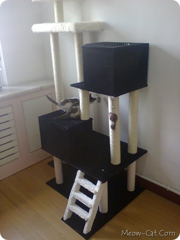 6 Free Plans For Cat Tree Meow Cat Com
