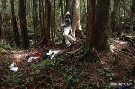 Floresta dos suicídios 03