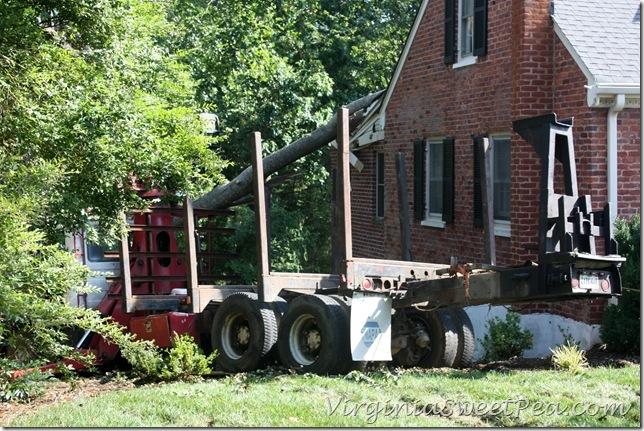 Trucks on Lawn2