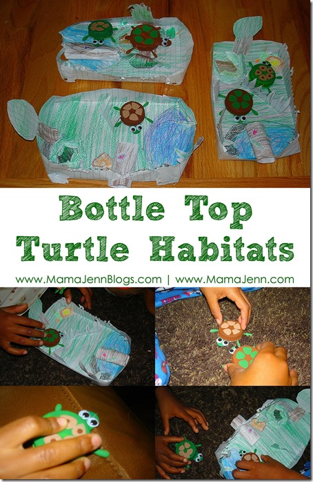Bottle Top Turtle Habitats