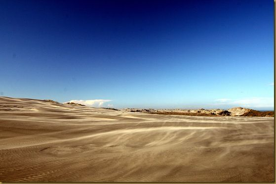 Sand blowing over Farewell Spit