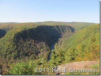 fall 2011 029