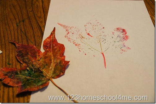 put on lots of marker ink and go quickly so it doesn't soak into the leaf