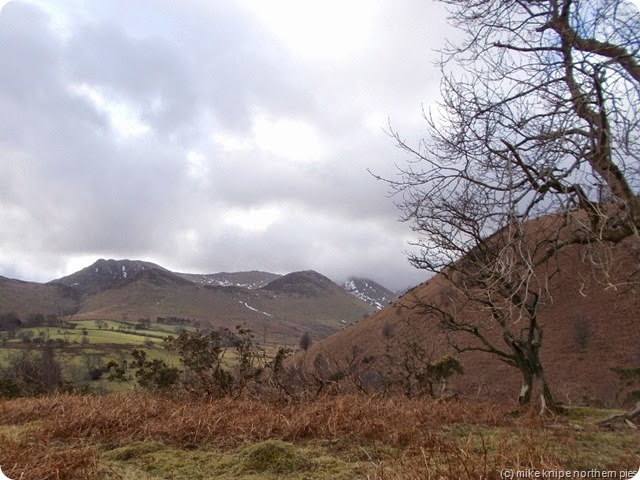 causey pike from braithwaite how
