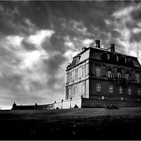 Eremitageslottet 13 by Dusan Vukovic - Black & White Buildings & Architecture