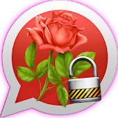 Flower Rose Lock Whats Chat