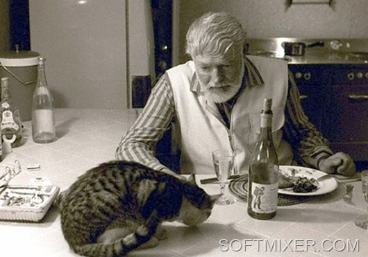 Hemingway-and-Cat