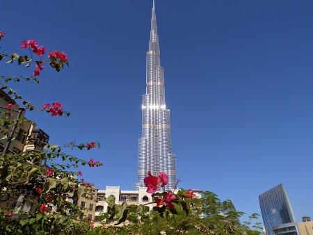 03. Burj Khalifa - Dubai.JPG