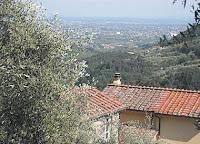 Divina_Lucca_14