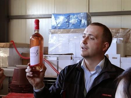 Drumul vinului -Basarabia: Ion Luca si vinul Crescendo