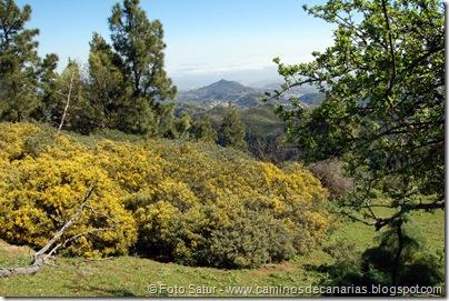 5596 Barranco de Crespo