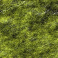 Seamless backgrounds of mosses15