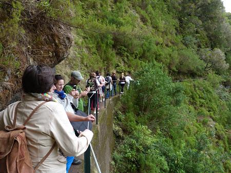Imagini Madeira: in continuare pe levadas