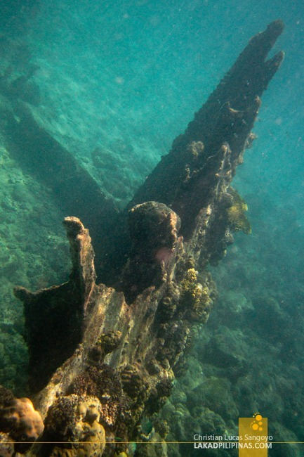 Japanese Wreck at Malapascua Island Hopping and Snorkeling