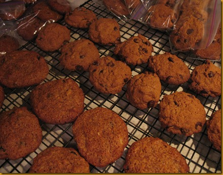 Paleo choc chip cookies & SCD monster cookies 4-2012 4