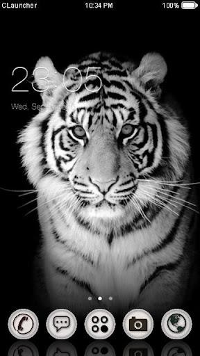 白 タイガー テーマ
