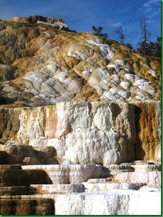 Mammoth Hot Springs Terraces (268)