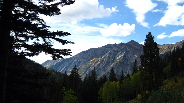 a mountaintop and trees in Little Cottonwood Canyon Utah